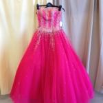Cinderella_Dreams_2013