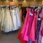 Cinderella_Dreams_2013_dresses